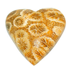 Natural 16.30cts fossil coral petoskey stone 21x21mm heart loose gemstone s22932