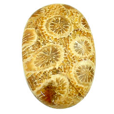 Natural 18.10cts fossil coral petoskey stone 24x16 mm oval loose gemstone s22960