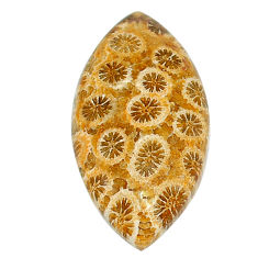 Natural 25.30cts fossil coral petoskey stone 32.5x17 mm loose gemstone s22931