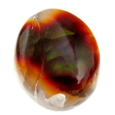Natural 9.05cts mexican fire agate cabochon 15x12 mm fancy loose gemstone s16205