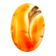 Natural 18.10cts montana agate brown cabochon 28x18 mm loose gemstone s17506