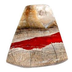 Natural 8.40cts mushroom rhyolite brown 21x17.5 mm fancy loose gemstone s23163