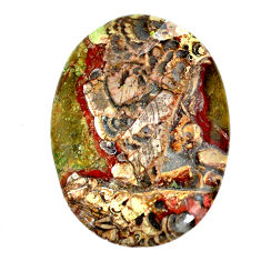 Natural 38.45cts mushroom rhyolite brown 42x29 mm oval loose gemstone s21920