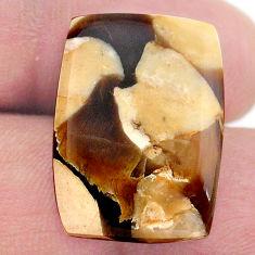 Natural 15.10cts peanut petrified wood fossil 22x16 mm loose gemstone s23228