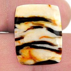 Natural 12.45cts peanut petrified wood fossil 22x17 mm loose gemstone s23238