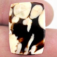 Natural 12.35cts peanut petrified wood fossil 23.5x16 mm loose gemstone s23239