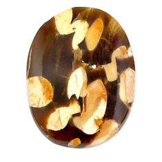 Natural 16.30cts peanut petrified wood fossil 24x18mm oval loose gemstone s21199