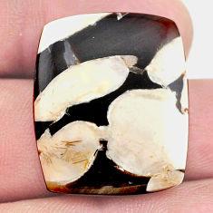 Natural 17.40cts peanut petrified wood fossil 25x20 mm loose gemstone s23222