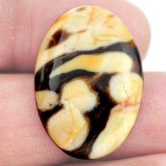 Natural 17.35cts peanut petrified wood fossil 26x18 mm loose gemstone s23225