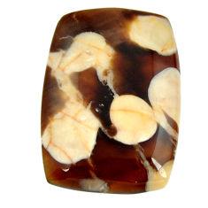 Natural 25.05cts peanut petrified wood fossil 28.5x20 mm loose gemstone s17137