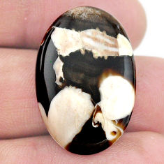 Natural 20.10cts peanut petrified wood fossil 28x18 mm loose gemstone s23223