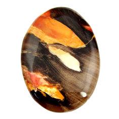 peanut petrified wood fossil 33x23mm oval loose gemstone s17122