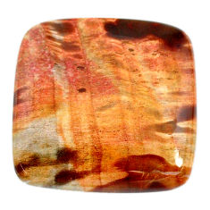 Natural 55.10cts petrified wood fossil brown 30x30 mm loose gemstone s20808