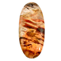 Natural 47.35cts petrified wood fossil brown 47x21 mm oval loose gemstone s20810