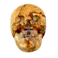 Natural 8.40cts picture jasper brown 18x12 mm skull loose gemstone s18215