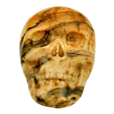 Natural 12.40cts picture jasper brown 22.5x15 mm skull loose gemstone s18106