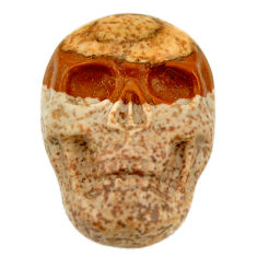 Natural 13.45cts picture jasper brown 22.5x15.5 mm skull loose gemstone s18107