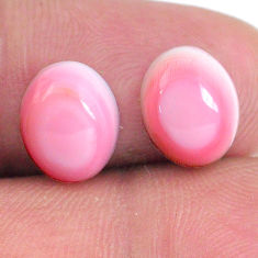 Natural 8.10cts queen conch shell pink 10x8 mm oval pair loose gemstone s20102