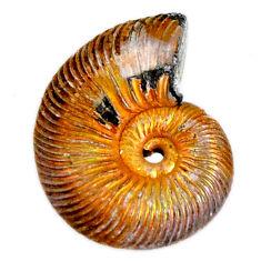 Natural 12.70cts russian jurassic opal ammonite 18x13.5 mm loose gemstone s19644