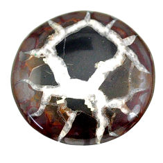 Natural 26.95cts septarian gonads black cabochon 28x28 mm loose gemstone s22517
