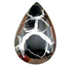 Natural 24.80cts septarian gonads black cabochon 32.5x20mm loose gemstone s22520
