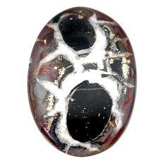Natural 23.85cts septarian gonads black cabochon 32x22 mm loose gemstone s22514