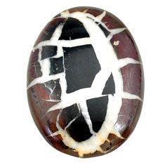 Natural 28.85cts septarian gonads black cabochon 32x22.5mm loose gemstone s22516