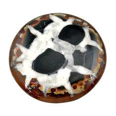 Natural 37.90cts septarian gonads black cabochon 32x32 mm loose gemstone s22510