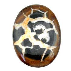 Natural 38.15cts septarian gonads black cabochon 33.5x24mm loose gemstone s22509