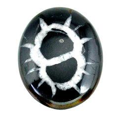 Natural 39.30cts septarian gonads black cabochon 33x25 mm loose gemstone s22502