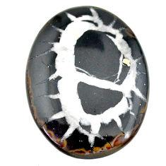 Natural 41.45cts septarian gonads black cabochon 38x29 mm loose gemstone s22515
