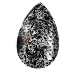 Natural 16.30cts stingray coral from alaska 30x18 mm pear loose gemstone s20749