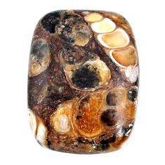 Natural 19.10cts turritella fossil agate 24x17.5 mm loose gemstone s21149