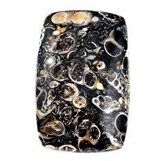 Natural 36.30cts turritella fossil agate 34x22 mm octagan loose gemstone s21152