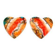 iny oyster arizona turquoise 18.5x18mm loose gemstone s16807