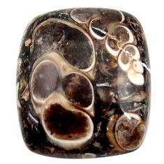 16.30cts turritella fossil agate cabochon 19x17 mm octagan loose gemstone s18745