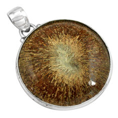 925 sterling silver 32.14cts natural cyclolite coral fossil pendant p79587