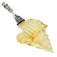 925 sterling silver natural white turbo seashell fancy pendant jewelry d5320