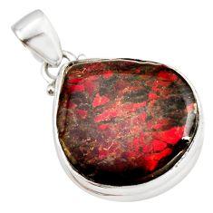 15.65cts natural multi color ammolite (canadian) 925 silver pendant r12775
