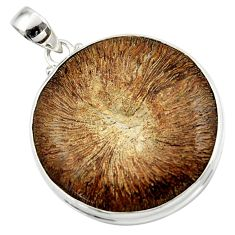 925 sterling silver 44.20cts natural brown cyclolite coral fossil pendant r41024