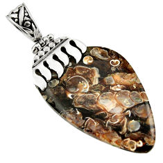 34.66cts natural brown turritella fossil snail agate 925 silver pendant r44354
