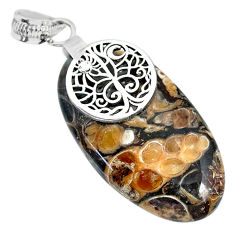 29.67cts natural brown turritella fossil snail agate 925 silver pendant r91262