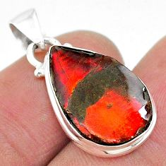 8.00cts natural multi color ammolite (canadian) 925 silver pendant t19000