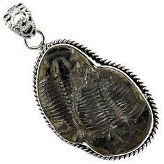 Natural black trilobite fancy shape 925 sterling silver pendant jewelry h95608