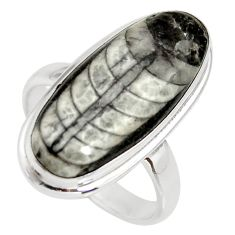 12.85cts natural black orthoceras 925 silver solitaire ring size 7.5 r34305