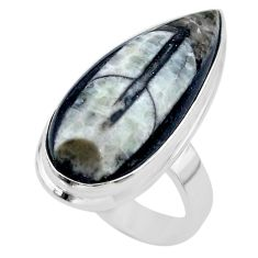 17.20cts solitaire natural black orthoceras 925 silver ring size 7 t29020