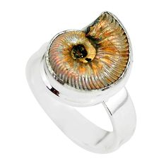 Natural russian jurassic opal ammonite 925 silver solitaire ring size 7.5 p64757